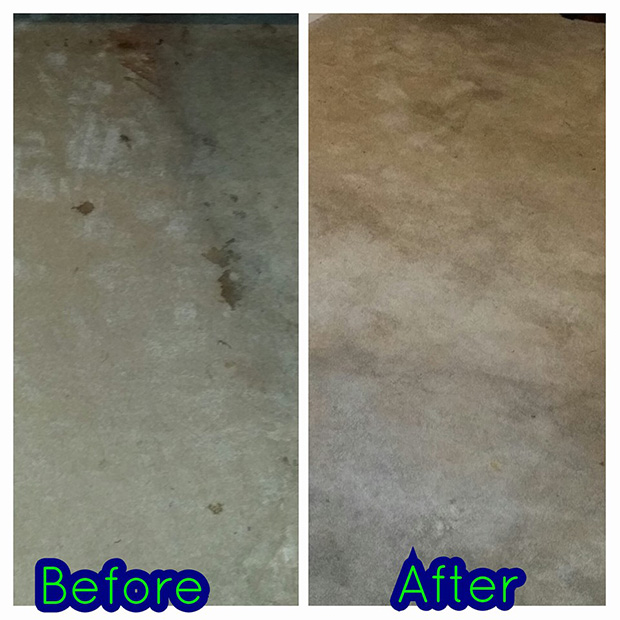 DirtLess-Cleaning-LLC_